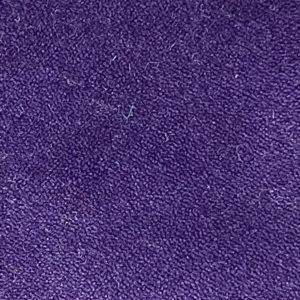 Eggplant Purple Remnant